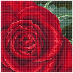 Red rose cross stitch by Jenny Barton. http://www.jbcrossstitch.com/flowers-and-plants/262-single-rose.html