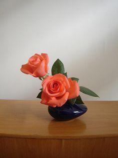 A rosa é sempre bela em qualquer ambiente.