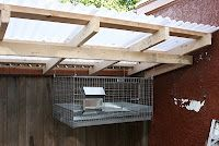 """Rabbitry is """"my"""" next project for the garden area...the dropping are cold vs hot like the chickens and doesn't need to be composted first."""