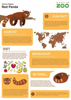 Zoo Infographic signage by Dylan Mackay, via Behance Animals Information, Information Graphics, Facts For Kids, Fun Facts, Weird Facts, Zoo Animals, Animals And Pets, Panda For Kids, Zoo Signage