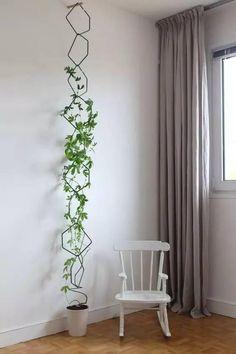 DIY | 園藝花盆,好看又簡單~ - Q博士