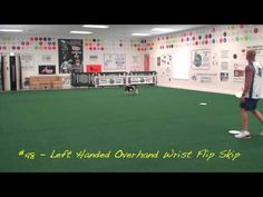 ▶ 101 Plus Frisbee Throws for Your Dog - YouTube