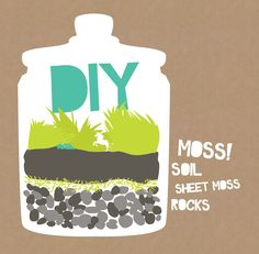 Create your own DIY moss terrarium! One of the best things about these is they don't need direct sunlight like your typical house plant.