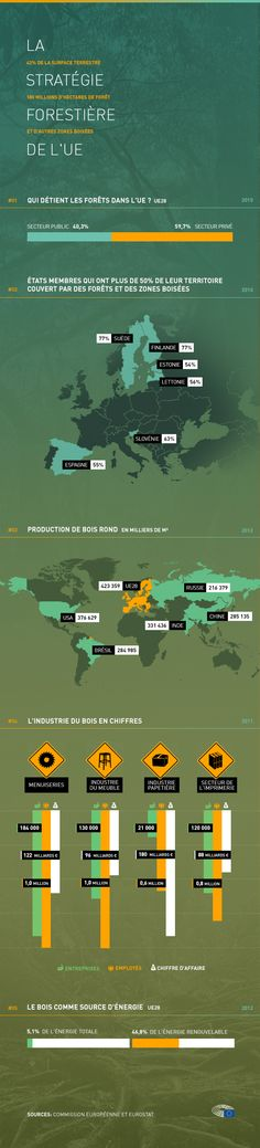 Infographie présentant les données importantes sur les forêts et les régions boisées de l'Union européenne