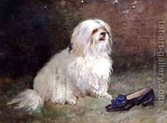A #maltese Terrier by Heywood Hardy