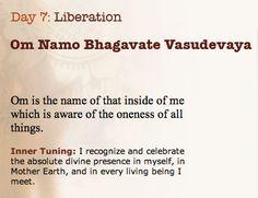    Om Namo Bhaghavathe Vaasudevaya Sree Dhanwantaraye Amrutha Kalasha Hasthaya Sarwa Aamaya Vinashanaya Thrilokhya Nadhaya Om Sree Maha Vishnave Namah..  