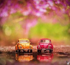 Find the perfect Photo Pin stock photos Miniature Photography, Cute Photography, Cute Little Things, Mini Things, Vw Bus, Volkswagen, Van Vw, Cute Pictures, Beautiful Pictures