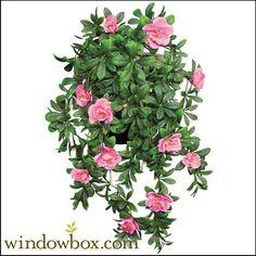 hanging silk plants | 34-azalea-pink.jpg
