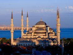 Blue Mesquita