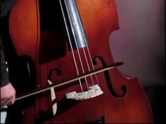 Baby Einstein - Meet the Orchestra: First Instruments - 40 minute Video on YouTube