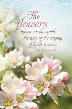 """""""The flowers appear on the earth; the time of the singing of birds is come""""  -Song of Solomon 2:12"""