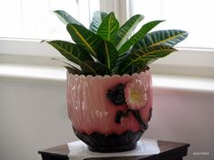 zsolnay rozsaszin - - Yahoo Image Search Results Yahoo Images, Image Search, Planter Pots