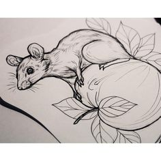 "51 mentions J'aime, 1 commentaires - Essi Tattoo (@essitattoo) sur Instagram : "" #mouse #ink #drawing #tattooart #tattoodrawing #natureart #animaldrawing #tattoodesign…"""