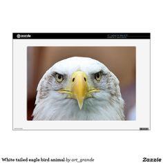 White tailed eagle bird animal laptop skin