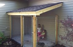 Drew built an awesome dog run. To make it custom Drew matched the existing slope of the roof, shingles and fascia. Now it just needs pai. Outdoor Dog Area, Outdoor Dog Runs, Backyard Dog Area, Dog Run Side Yard, Dog Yard, Puppy Nursery, Puppy Room, Dog Kennel Outside, Diy Dog Run