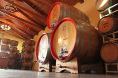 Big Changes in Our Barrel Room! #pontewinery