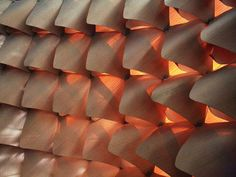 Differentiated Wood Lattice Shell