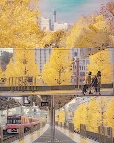 Wonderful Things, Street View, Photoshop, Japan, Wallpaper, Cute, Anime, Painting, Fall