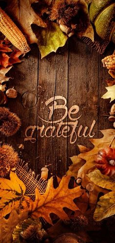Thanksgiving wallpaper by whydontweAva - 9710 - Free on ZEDGE™