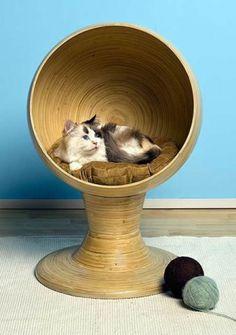 8 camas fantásticas para gatos | Ronronar
