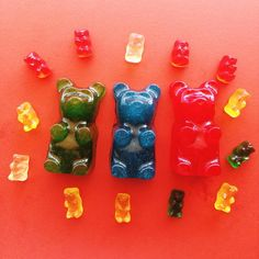 Big Top Candy Shop - rated one of the top 10 candy stores in Texas (Green/Yellow gummies)