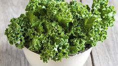 Just as much calcium in Kale aas ther eis in milk