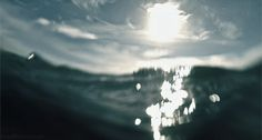 Netherlands-based artist named Marinus who isolates key segments of nature films, often just a split second in length, and uses the footage to create beatiful, whimsical, and strangely poetic gifs.