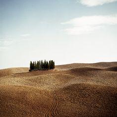 Tuscany (by De Vetpan studios)