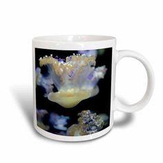 3dRose Jelly Fish, Monterey Bay Aquarium, California - US05 JGS0138 - Jim Goldstein, Ceramic Mug, 15-ounce