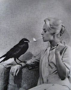 Tippi Hedren by Philippe Halsman (The Birds, Alfred Hitchcock)