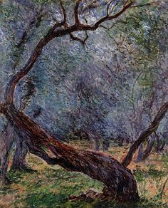 Olive Trees Study, Claude Monet. -he captures all the intense emotion flowing in the tree bark.