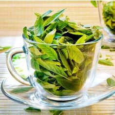 18 Amazing Benefits Of Neem Leaves For Skin, Hair And Health: