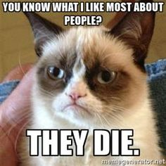 Grumpy Cat - You know what i like most about people? They die.