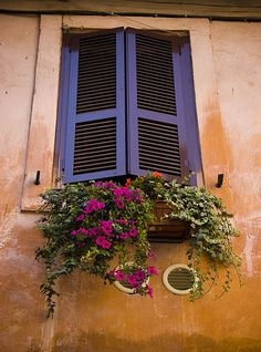 blue shutter color with bold floral accent