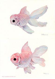 Oranda1,2 by Hikari Shimoda