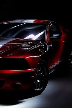 Awesome Cars sports 2017: Mustang Shelby GT500A #iPhone wallpaper. More sports car pics at www.freecompute...  MotoPsycho :motor crazy Check more at http://autoboard.pro/2017/2017/05/04/cars-sports-2017-mustang-shelby-gt500a-iphone-wallpaper-more-sports-car-pics-at-www-freecompute-motopsycho-motor-crazy/