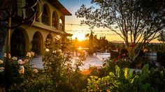 Temecula Valley, within an hour's drive of San Diego, Palm Springs or Orange County, bills itself as Southern California's Wine Country. Though it...