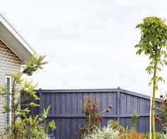 Sorting out a multi-level garden with beds sporting vibrant, low-growing plants has made this coastal patch in Torquay a standout. Australian Native Garden, Australian Plants, Coastal Gardens, Beach Gardens, Landscaping Along Fence, Garden Landscaping, Small Garden Landscape, Garden Beds, Garden Plants