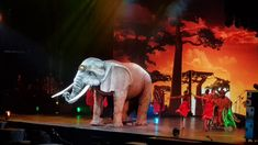 Afrika Afrika - Tips Arena Linz (Elefant) Elephant, Animals, Linz, Africa, Culture, Music, Animales, Animaux, Elephants