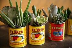 Fiesta Decorations El Pato 6 Large metal cans   unique DIY Flower arrangements rehearsal dinner buffet corporate picnic meetings showers
