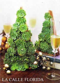 Mais uma alternativa de árvore de Natal feita com suculentas (echeverrias) para decorar sua casa com muito charme.
