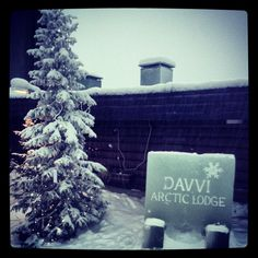 Davvi Arctic Lodge #Finland Arctic, Finland, Holiday Decor, Travel, Outdoor, Outdoors, Viajes, Traveling, North Pole