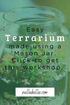 This is a hands on workshop building a terrarium using a classic mason jar – a perfect home for your new succulent. A terrarium is an easy and fun way to bring the beauty of nature inside your home! Join us to make yours today. Terrarium Workshop, Build A Terrarium, Mason Jar Terrarium, Mason Jar Diy, Improve Yourself, Make It Yourself, Cute Diys, You Are Awesome, Diy Ideas