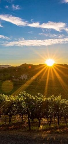 Where to drink, dine, and relax in America's best wine region, Napa Valley and Sonoma County. Napa Valley, Sonoma Valley, Napa Sonoma, Sonoma County, Famous Wines, Napa California, Mekka, Wine Country, Luxury Travel