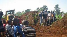 Farmers count losses after county govt destroys crops