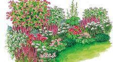Der Maiblumenstrauch sorgt mit seiner überreichen Blüte für romantische Stimmung im Wonnemonat Mai. Hier haben wir vier Exemplare mit farblich