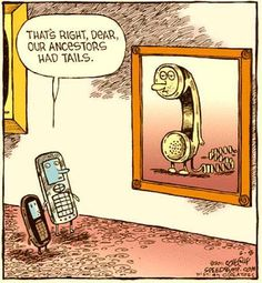 that's right, dear, our ancestors had tails.