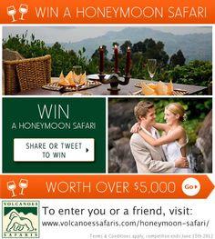Luxury Honeymoon Safari Competition