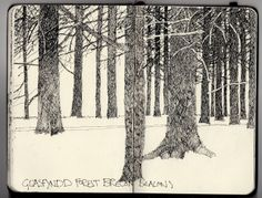 "Ian Sidaway Fine Line, ""Glasfyndd Forest, Brecon Beacons"""