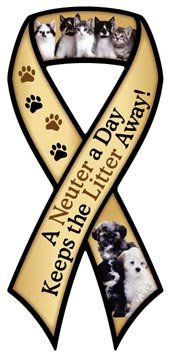 A NEUTER A DAY RIBBON